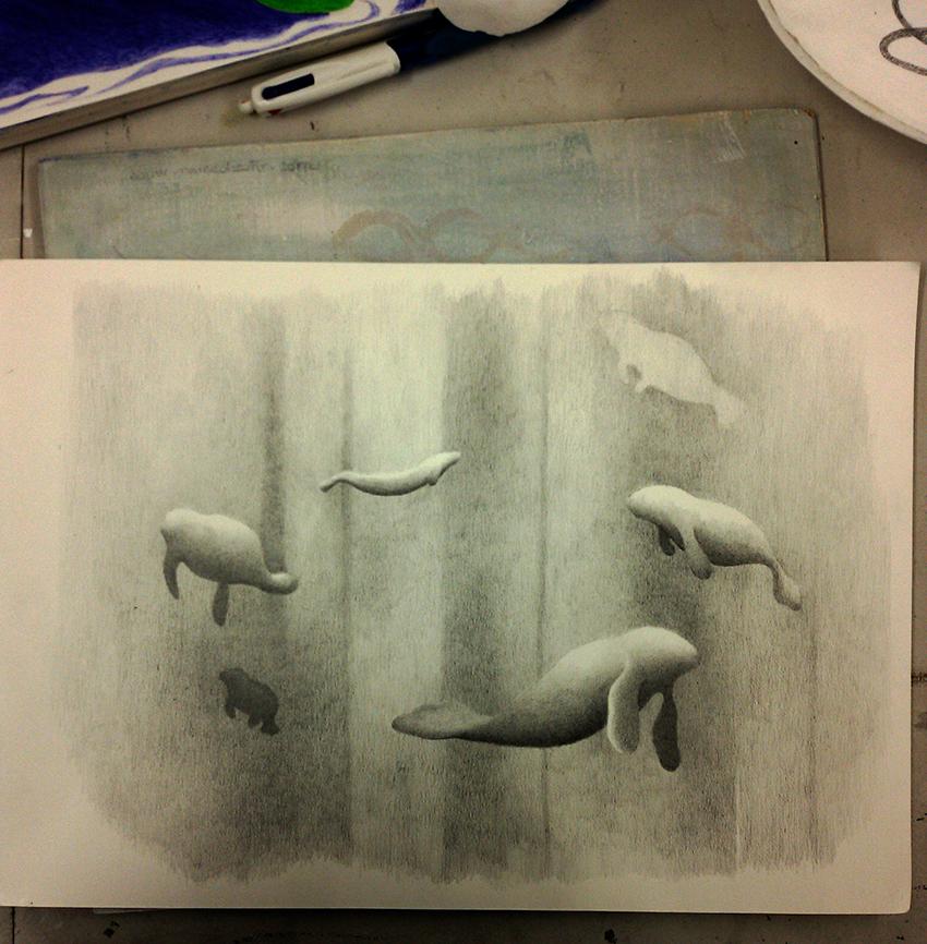 sketch-copia